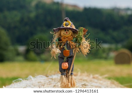 Scarecrow strawman made to guard the fields #1296413161