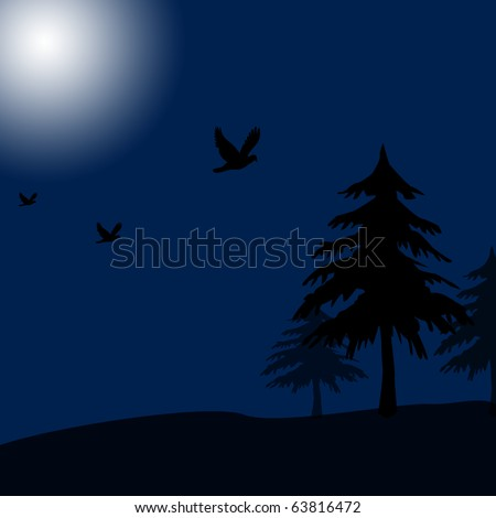dark trees background. ackground,dark night,tree