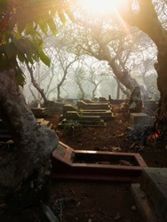 Scary cemetary with fog and trees. Graveyard, tomb, burial, and creepy trees