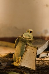 Scary frog in haunted house.