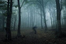 scary ghost shadow in dark forest, strange horror landscape