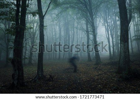scary ghost shadow in dark forest, strange horror landscape Сток-фото ©