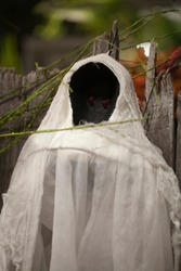 Scary Halloween ghost watching in wihte fabric. Spooky ghost against a blurry background. Ghost decoration in a garden.