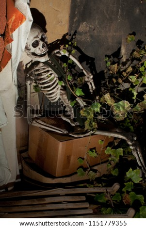 scary life size plastic helloween skeleton sits on a paper box at an old dirty attic, it seems to have been forgotten long time ago