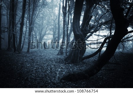scary man with robe in dark forest