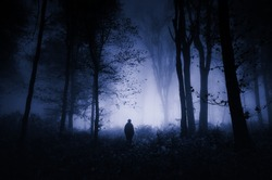 scary night scene in forest, halloween landscape