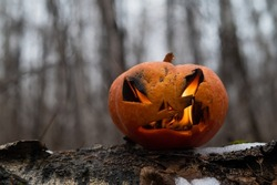 Scary pumpkin with tongues of flame in a dense forest. Jack o lantern for halloween
