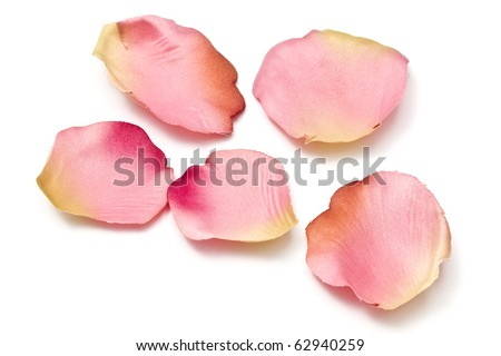 Scattered flower petals isolated on white background