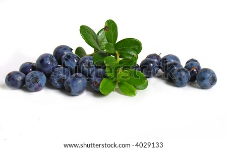 Scattering of bilberries on white background