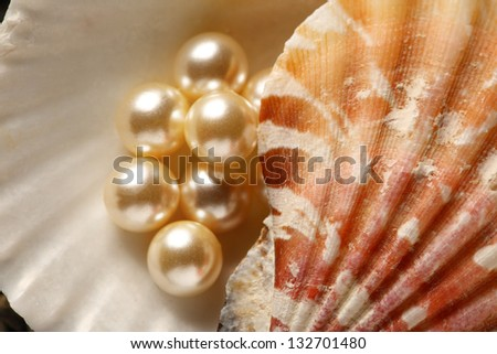 Scattering white pearls in seashell on pebbles