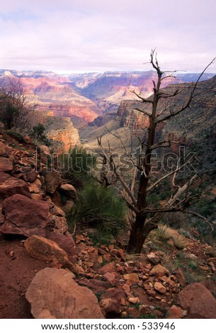 Scene along Bright Angle Trail in the Grand Canyon.
