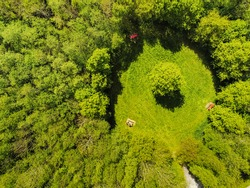 Scene in a park. Glade with tables and benches for picnic in a forest park one man sitting at a table. Aerial top down view, Green trees and grass, One tree right in the middle of round shape glade.