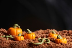 Scene of halloween, sugar paste pumpkins on chocolate cake ground, black background, copy space