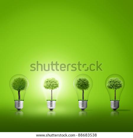 Scene of the light from lightbulb with tree inside
