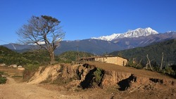 Scene on the way to Ghale Gaun. Tree, shed and snow capped Annapurna range.