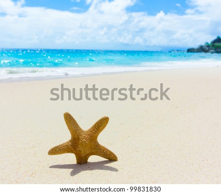 Scene Sea Memories