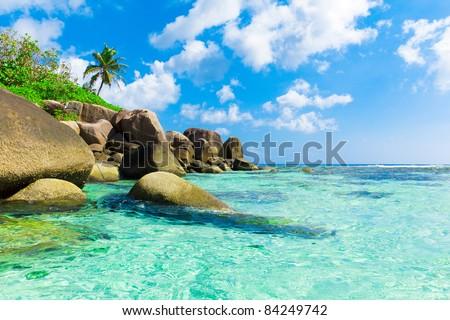 Scene Seascape Eden