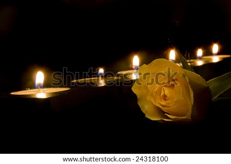 Scene with a yellow rose and burning candles
