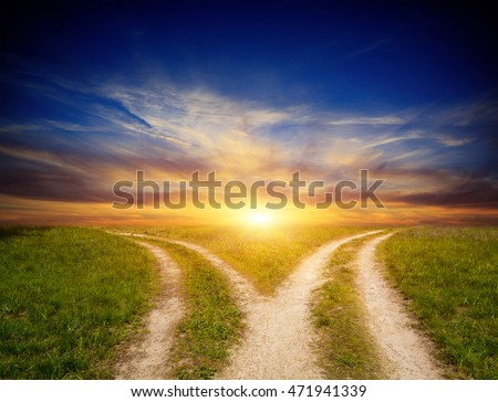 scene with fork roads in steppe on sunset sky background #471941339