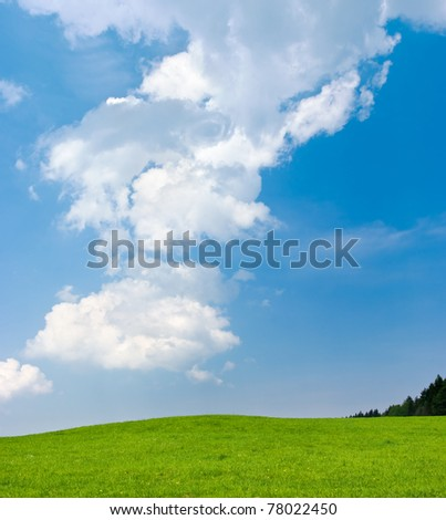 Scene with green meadow and blue sky