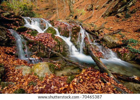 Scene with mountain stream in autumn forest