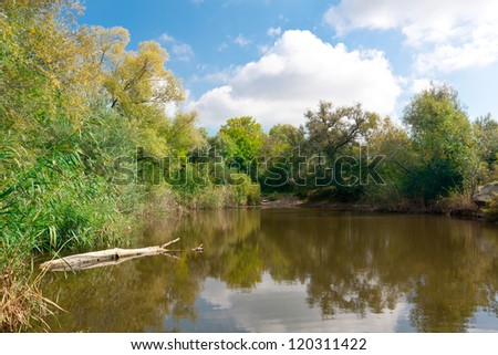Scene with Nice day on small lake
