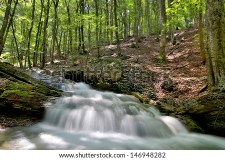 Scene with waterfall in summer forest