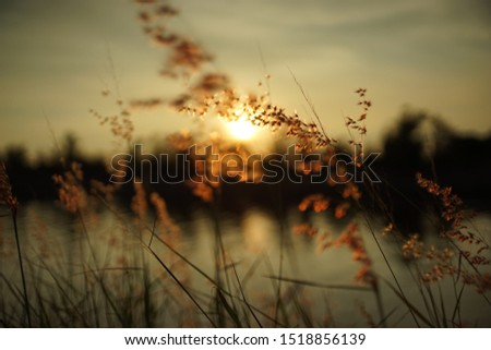Sceneries Of Sunset At Riverside #1518856139