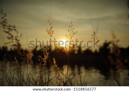 Sceneries Of Sunset At Riverside #1518856577