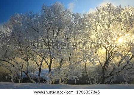 Scenery at dawn in winter, Kitakae City, Iwate Prefecture Stock photo ©