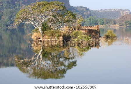Scenery at the Ranthambore National Park in Rajasthan, India