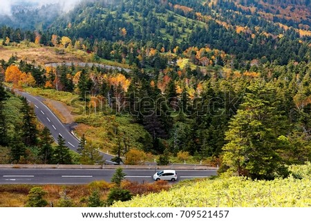 Scenery of a car driving on a mountain highway, winding through colorful autumn forests by the mountainside in Shiga Kogen Highland, a beautiful national park & tourist destination in Nagano Japan #709521457