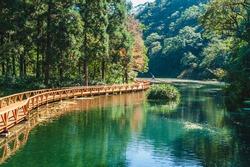 scenery of fushan botanical garden in Ilan, taiwan