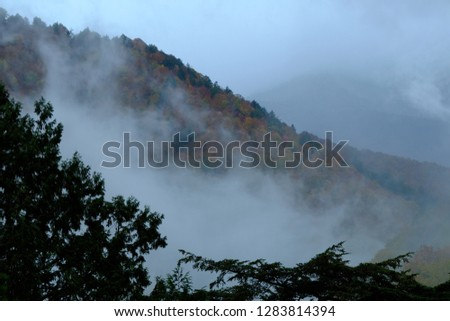 Scenery of the autumn hazy forest and mountain in the distance