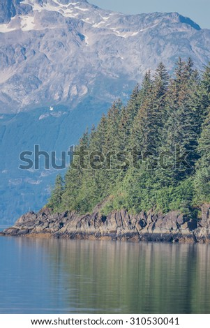 Scenic Alaska pine forests and snow capped mountains
