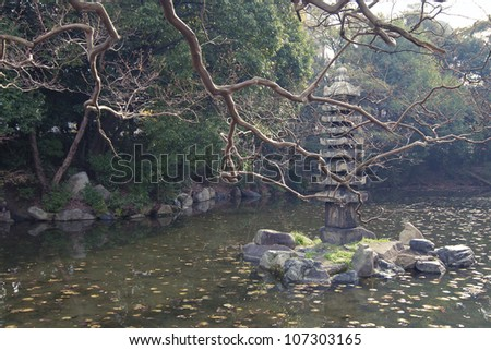 scenic autumnal tree branches over pond waters in Kyoto zen garden