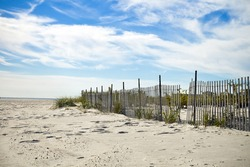 Scenic Beach Scene in New Jersey on a Sunny Day