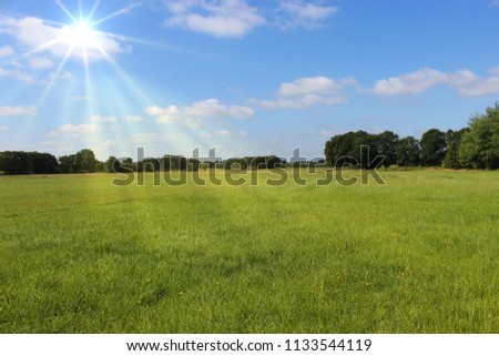 Scenic countryside landscape near Oldenburg, Northern Germany, fresh green summer meadow under sunny blue sky with light rays and fleecy clouds, copy space for text, concept of nature,  rural life