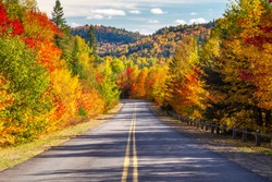 Scenic Drive through Autumn