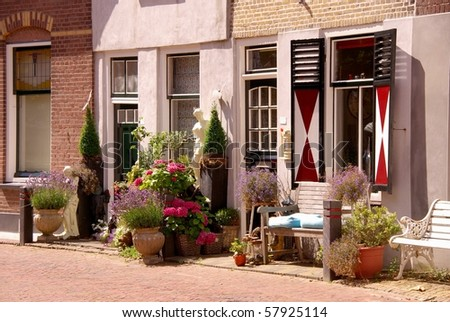 Scenic houses and a street garden with flowering plants