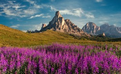 Scenic image of Dolomites Alps. Wonderful sunny Landscape. Great view on famouse Ra Gusela peak, perfect sky and pink flowers on background. Awesome alpine highlands in sunny day. stunning scenery