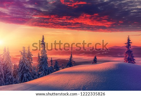 Scenic image of Winter Landscape during sunset. Colorful wintry sunrise With dramatic sky under sunlit. Impressive picture of wild area. Amazing wintry background. Fantastic Christmas Scene. postcard