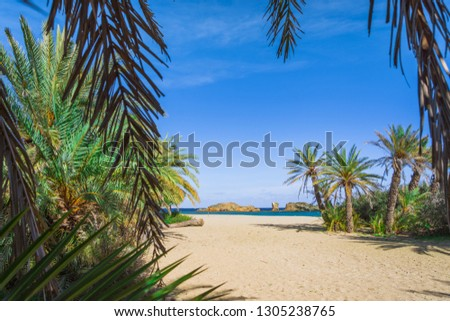 Scenic landscape of palm trees, turquoise water and tropical beach, Vai, Crete, Greece. #1305238765