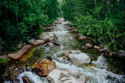 Scenic landscape with beautiful mountain creek with green water among lush thickets in forest. Idyllic green scenery with small river and rich greenery. Green water in mountain brook among wild flora.