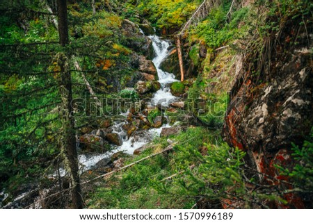 Scenic landscape with beautiful waterfall in forest among rich vegetation. Atmospheric woody scenery with fallen tree trunk in mountain creek. Spring water among wild plants and mosses on rocks. #1570996189