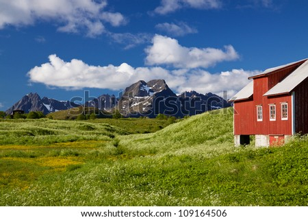 Scenic Lofoten islands in Norway during short summer north of arctic circle with typical red wooden building, dramatic mountain peaks and flowering fields