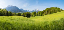 Scenic panoramic view of idyllic rolling hills landscape with blooming meadows and snowcapped alpine mountain peaks in the background on a beautiful sunny day with blue sky and clouds in springtime