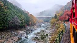 Scenic scenery of Sagano romantic railway in the morning of autumn season, Kyoto, Japan