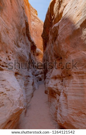 Scenic slot canyon in Valley of Fire State Park, Nevada, USA #1264121542