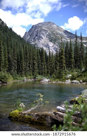 Scenic summer Canadian landscape of wild alpine mountains, conifers, and a lake Photo stock ©